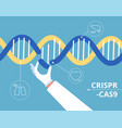 crispr cas9 concept biochemical engineering vector image vector image