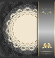 luxury design elements vector image vector image