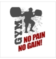 No pain no gain - label for flayer poster logo t vector image vector image