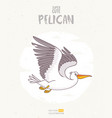pelican cartoon vector image