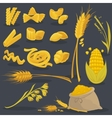 set foods of wheat Italian cuisine vector image