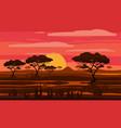 sunset in africa savanna landscape