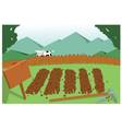 vegetable garden and cow vector image vector image