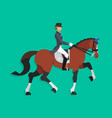 Dressage horse and rider Equestrian sport vector image