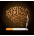 Brain speech bubbles vector image vector image