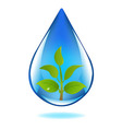 Drop Of Water With Sprout vector image vector image
