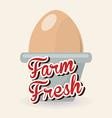 fresh eggs vector image vector image