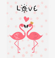 love card pink flamingo in love kissing flat vector image vector image