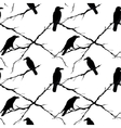 Seamless crows and tree branches vector image vector image