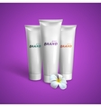 White tubes mock-up for cream tooth paste or gel vector image