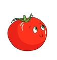 Vegetable tomato vector image
