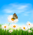 Nature background with green grass and butterfly vector image vector image