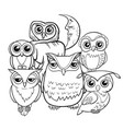 owls group cartoon characters coloring book vector image