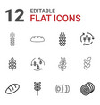 12 barley icons vector image vector image