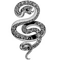 angry snake tattoo black and white vector image vector image