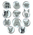 dog hand drawn dog portraits with breed names vector image vector image