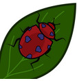 ladybug with hearts instead of spots on a green vector image vector image