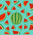 watermelon whole ripe slice icon half cut with vector image