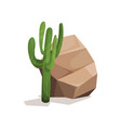brown rock stone and cactus landscape design vector image vector image