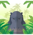 Hippo on the Jungle Background vector image