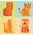 set of flat cat icons vector image vector image