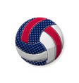 volleyball white symbol vector image vector image