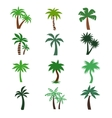 Color palm trees silhouettes vector image