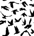 Doves and pigeons seamless pattern for peace vector image vector image