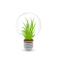 Eco lamp with grass inside vector image