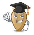 graduation amphora character cartoon style vector image vector image