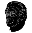 monkey avatar vector image