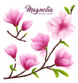 realistic magnolia flower icon set vector image