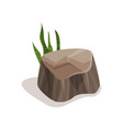 brown stone with green grass landscape design vector image vector image
