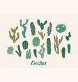 cactus collection set design vector image