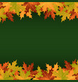 colorful leaves on a green background vector image