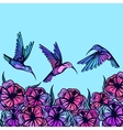 Flying tropical stylized hummingbirds with flowers vector image vector image