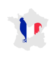 French cock vector image vector image