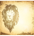 Grunge Lion Vintage Background vector image vector image