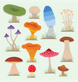 mushrooms for cook food and poisonous nature meal vector image vector image