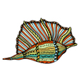 Seashell line art vector image vector image