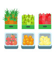 shopping products pineapple fruits set vector image