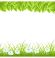 template with leaves and grass vector image