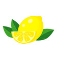 yellow lemon with green leaf and lemon slice vector image vector image