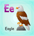 animals alphabet e is for eagle vector image vector image