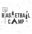 basketball camp badge vector image
