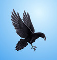 Black raven on blue background vector image