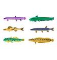 brook trout fish fauna set vector image vector image