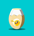 cooked egg with chicken on eggshell vector image vector image