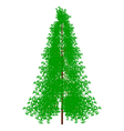 Fir tree on white vector image