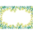 Frame from yellow narcissi vector image vector image